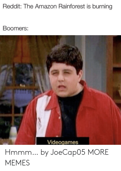 Amazon, Dank, and Memes: Reddit: The Amazon Rainforest is burning  Boomers:  Videogames Hmmm… by JoeCap05 MORE MEMES