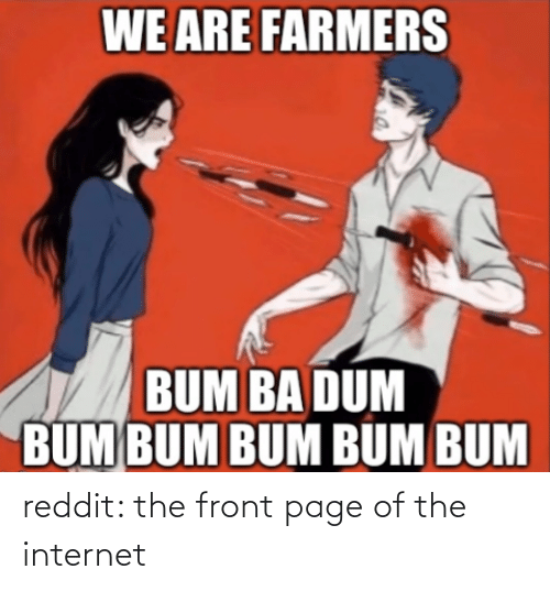the internet: reddit: the front page of the internet