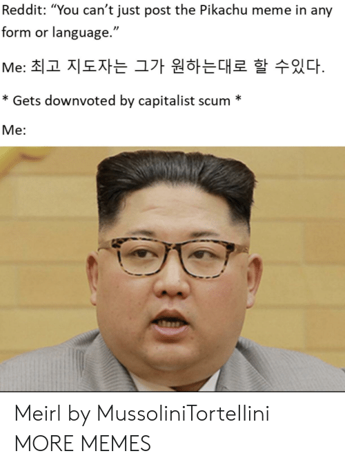 """Pikachu Meme: Reddit: """"You can't just post the Pikachu meme in any  form or language.""""  Me: 최고 지도자는 그가 원하는대로 할 수있다.  * Gets downvoted by capitalist scum *  Me: Meirl by MussoIiniTorteIIini MORE MEMES"""