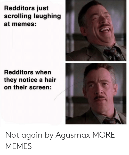 Dank, Memes, and Target: Redditors just  scrolling laughing  at memes:  Redditors when  they notice a hair  on their screen: Not again by Agusmax MORE MEMES