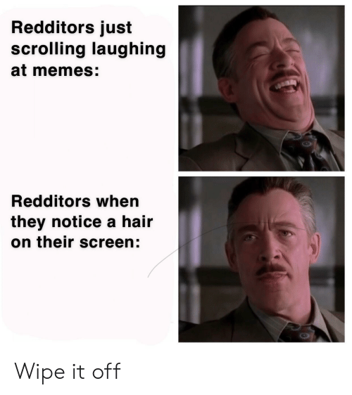 wipe: Redditors just  scrolling laughing  at memes:  Redditors when  they notice a hair  on their screen: Wipe it off