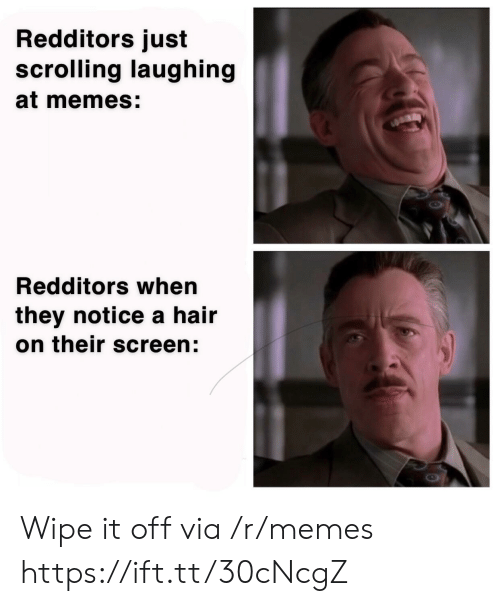 wipe: Redditors just  scrolling laughing  at memes:  Redditors when  they notice a hair  on their screen: Wipe it off via /r/memes https://ift.tt/30cNcgZ