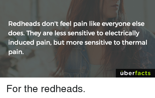 redheads: Redheads don't feel pain like everyone else  does. They are less sensitive to electrically  induced pain, but more sensitive to thermal  pain.  überfacts For the redheads.
