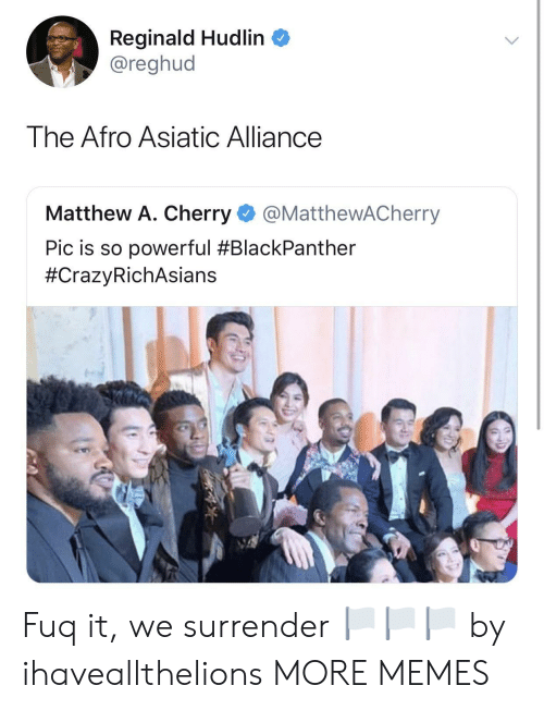 Dank, Memes, and Target: Reginald Hudlin  @reghud  The Afro Asiatic Alliance  Matthew A. Cherry @MatthewACherry  Pic is so powerful Fuq it, we surrender 🏳️🏳️🏳️ by ihaveallthelions MORE MEMES