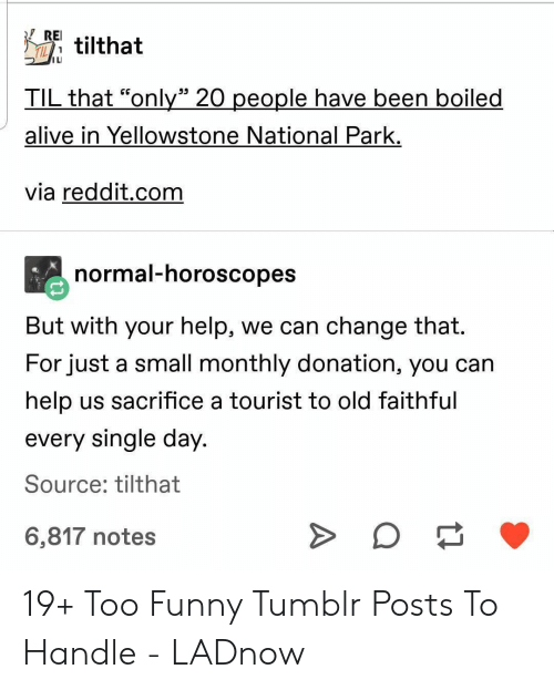 "Alive, Funny, and Reddit: REI  tilthat  IL  1  IL  TIL that ""only"" 20 people have been boiled  alive in Yellowstone National Park.  via reddit.com  normal-horoscopes  But with your help, we can change that.  For just a small monthly donation, you can  help us sacrifice a tourist to old faithful  every single day  Source: tilthat  6,817 notes 19+ Too Funny Tumblr Posts To Handle - LADnow"