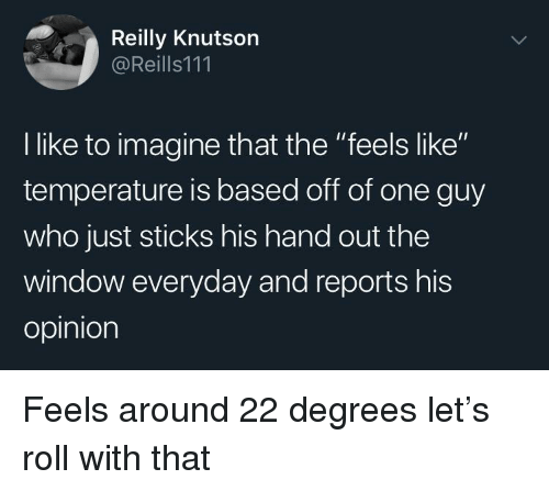 "Sticks, Who, and One: Reilly Knutson  @Reills111  l like to imagine that the ""feels like""  temperature is based off of one guy  who just sticks his hand out the  window everyday and reports his  opinion Feels around 22 degrees let's roll with that"