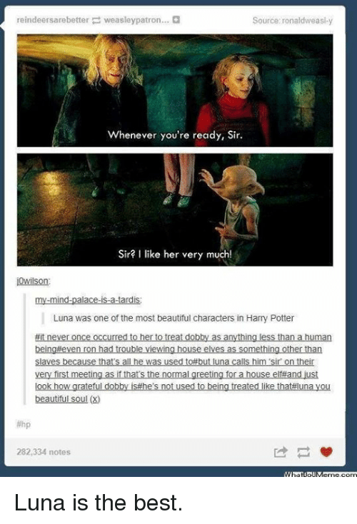 you beauty: reindeersarebetter weasley patron...  Source: ronaldweasi y  Whenever you're ready, Sir.  Sir? I like her very much  i Wilson  mind.  allo  Luna was one of the most beautiful characters in Harry Potter  #it never once occurred to her o treat dobby as anything less than a human  being even ron had trouble viewing house elves as something other than  Slaves because thats all he was used to#but luna calls him sir ontheir  very first meeting as ifthats the normal greeting for a house elfand just  look how grateful dobby isthe's not used to being treated like thataluna you  beautiful soul (2)  282,334 notes Luna is the best.