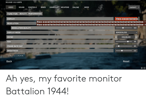 Borderless: RELEASE-1.0.0-22676  SOUND  GAMEPLAY  custom1  VIDEO  CONTROLS  BINDS  WEAPONS  ONLINE  MODS  TUNE FOR: BEAUTY  PERFORMANCE  DISPLAY  RESOLUTION  100  RESOLUTION QUALITY  BORDERLESS  DISPLAY MODE  DISABLED  VSYNC  95  FOV  60  FRAME RATE CAP  2.2  BRIGHTNESS  Back  Apply  Reset Ah yes, my favorite monitor Battalion 1944!
