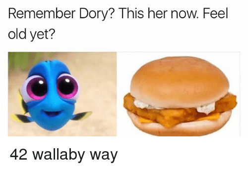 Feeling Old: Remember Dory? This her now. Feel  old yet? 42 wallaby way