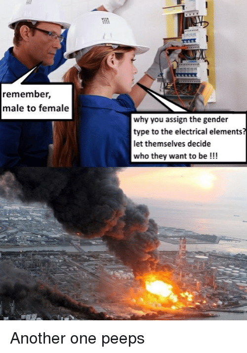 Another One, Another, and Gender: remember,  male to female  why you assign the gender  type to the electrical elements  let themselves decide  who they want to be!!!