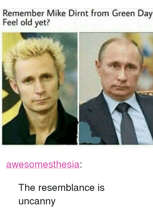 "mike dirnt: Remember Mike Dirnt from Green Day  Feel old yet? <p><a href=""http://awesomesthesia.tumblr.com/post/173123871507/the-resemblance-is-uncanny"" class=""tumblr_blog"">awesomesthesia</a>:</p>  <blockquote><p>The resemblance is uncanny</p></blockquote>"
