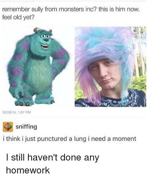monster inc: remember sully from monsters inc? this is him now.  feel old yet?  10/28/14, 1:07 PM  sniffing  i think i just punctured a lung i need a moment I still haven't done any homework