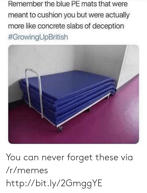 concrete: Remember the blue PE mats that were  meant to cushion you but were actually  more like concrete slabs of deception  You can never forget these via /r/memes http://bit.ly/2GmggYE