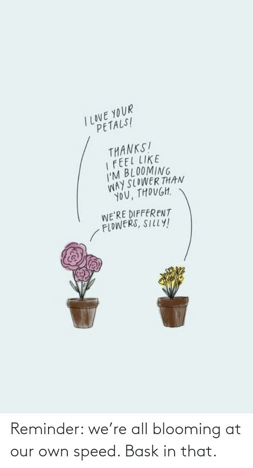 all: Reminder: we're all blooming at our own speed. Bask in that.