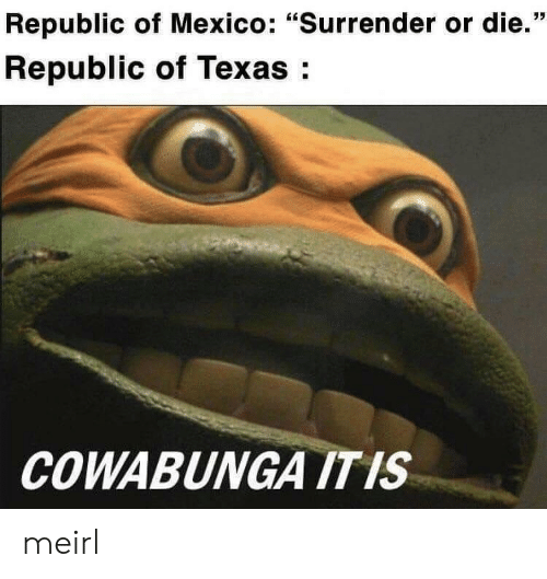 "Mexico, Texas, and MeIRL: Republic of Mexico: ""Surrender or die.""  Republic of Texas:  COWABUNGA ITIS meirl"