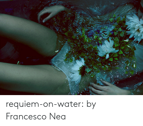 consciousness: requiem-on-water:  by Francesco Nea