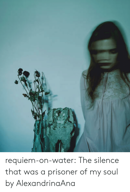 prisoner: requiem-on-water:  The silence that was a prisoner of my soul by AlexandrinaAna