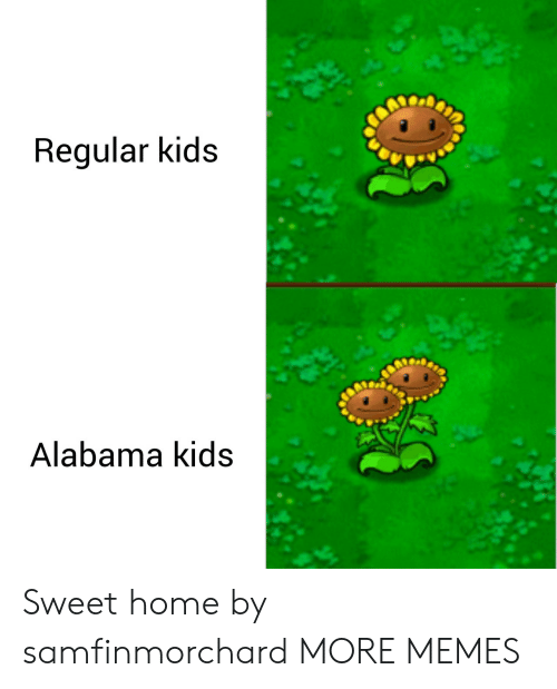 Dank, Memes, and Target: Reqular kidS  Alabama KIds Sweet home by samfinmorchard MORE MEMES