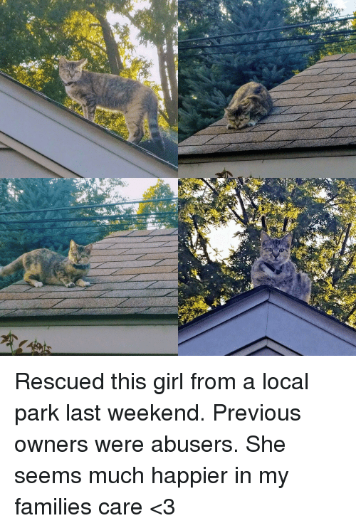 Girl, Weekend, and Local