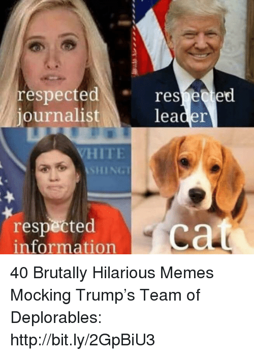 Memes, Http, and Information: respectedreseed  journalist  leader  ITE  SHING  respected  information 40 Brutally Hilarious Memes Mocking Trump's Team of Deplorables: http://bit.ly/2GpBiU3