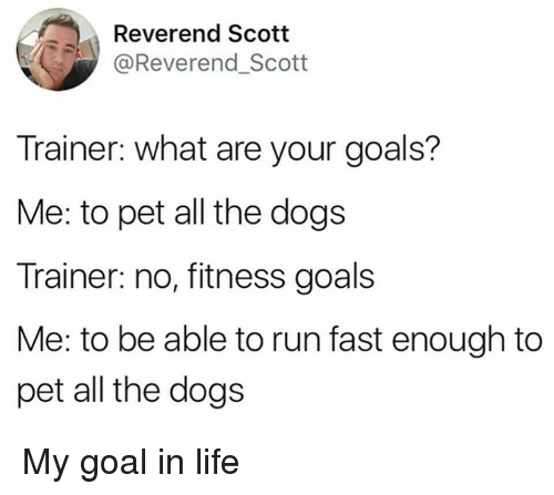 Dogs, Goals, and Life: Reverend Scott  @Reverend_Scott  Trainer: what are your goals?  Me: to pet all the dogs  Trainer: no, fitness goals  Me: to be able to run fast enough to  pet all the dogs My goal in life