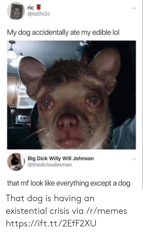 existential crisis: ric  @toOhi2c  My dog accidentally ate my edible lol  Big Dick Willy Will Johnson  @thedicksalesmarn  that mf look like everything except a dog That dog is having an existential crisis via /r/memes https://ift.tt/2EfF2XU