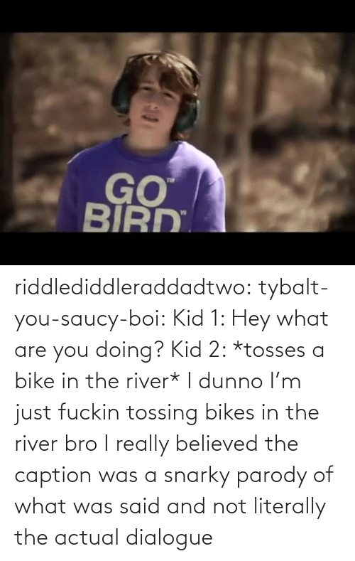 are you: riddlediddleraddadtwo:  tybalt-you-saucy-boi:  Kid 1: Hey what are you doing? Kid 2: *tosses a bike in the river* I dunno I'm just fuckin tossing bikes in the river bro    I really believed the caption was a snarky parody of what was said and not literally the actual dialogue