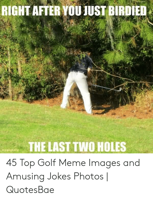 Golf Meme: RIGHT AFTER YOU JUST BIRDIED  THE LAST TWO HOLES  mygogiorg 45 Top Golf Meme Images and Amusing Jokes Photos | QuotesBae