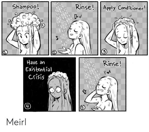 MeIRL, Shampoo, and Crisis: Rinse! Apply Cond?tioner!  Shampoo!  3)  Have an  Existential  crisis  Rinse!  (4) Meirl