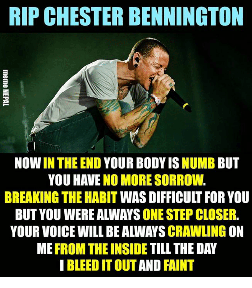 nepali: RIP CHESTER BENNINGTON  NOW IN THE END YOUR BODY IS NUMB BUT  YOU HAVE NO MORE SORROW.  BREAKING THE HABIT WAS DIFFICULT FOR YOU  BUT YOU WERE ALWAYS ONE STEP CLOSER.  YOUR VOICE WILL BE ALWAYS CRAWLING ON  ME FROM THE INSIDE TILL THE DAY  I BLEED IT OUT AND FAINT