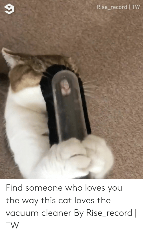 Vacuum: Rise_record TW Find someone who loves you the way this cat loves the vacuum cleaner  By Rise_record | TW
