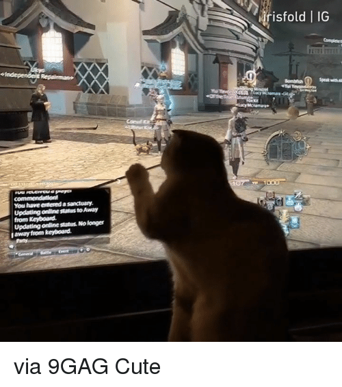 9gag, Cute, and Dank: risto  ld   IG  You have evtered a sanctuary  Updating online status to Away  from Keyboard  Updating online status. No longer  away from keyboand via 9GAG Cute