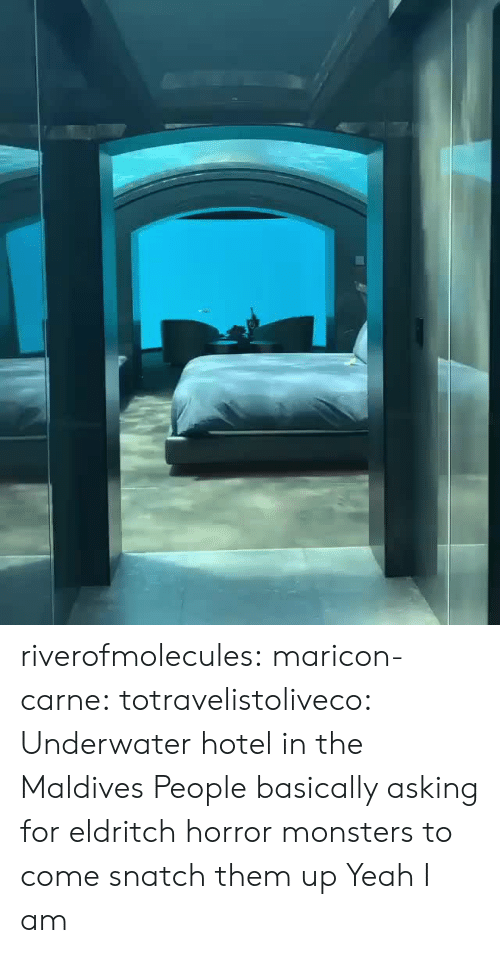 Hotel: riverofmolecules:  maricon-carne:   totravelistoliveco:  Underwater hotel in the Maldives  People basically asking for eldritch horror monsters to come snatch them up    Yeah I am