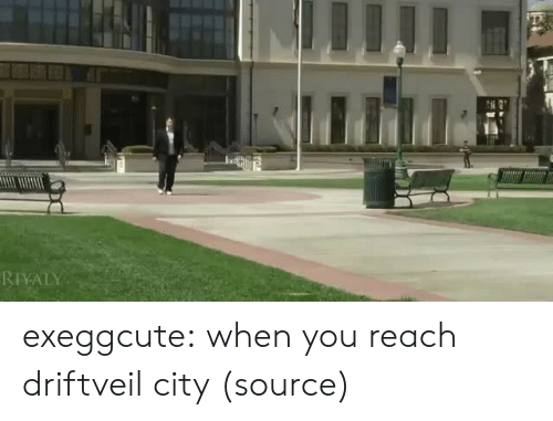 Tumblr, Twitter, and Blog: RIYALY exeggcute: when you reach driftveil city (source)