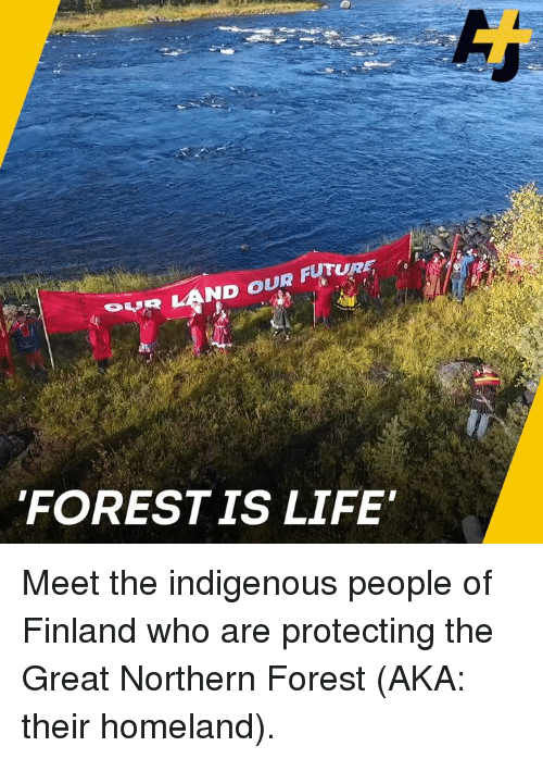 Future, Life, and Memes: RLAND OUR FUTURE  FORESTIS LIFE Meet the indigenous people of Finland who are protecting the Great Northern Forest (AKA: their homeland).