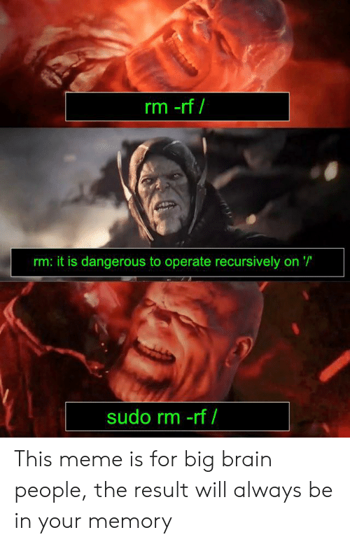 Meme, Reddit, and Brain: rm -rf  rm: it is dangerous to operate recursively on '  sudo rm -rf / This meme is for big brain people, the result will always be in your memory