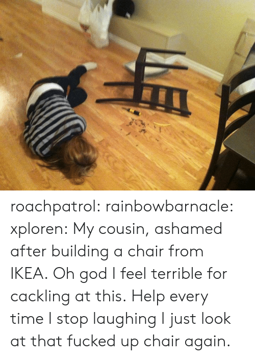 Just Look At That: roachpatrol:  rainbowbarnacle:  xploren:  My cousin, ashamed after building a chair from IKEA.  Oh god I feel terrible for cackling at this.  Help every time I stop laughing I just look at that fucked up chair again.