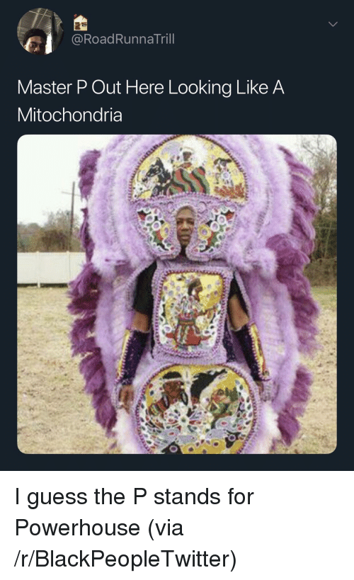 The P: @RoadRunnaTril  Master P Out Here Looking Like A  Mitochondria I guess the P stands for Powerhouse (via /r/BlackPeopleTwitter)