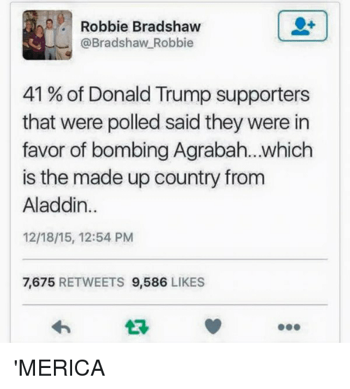 Donald Trump Supporters: Robbie Bradshaw  @Bradshaw Robbie  41 of Donald Trump supporters  that were polled said they were in  favor of bombing Agrabah...which  is the made up country from  Aladdin  12/18/15, 12:54 PM  7.675  RETWEETS  9,586  LIKES 'MERICA