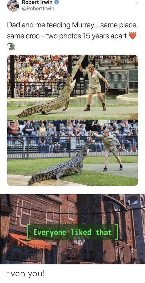 Dad, Photos, and You: Robert Irwin  @Robertlrwin  Dad and me feeding Murray... same place,  same croc - two photos 15 years apart  Everyone liked that Even you!