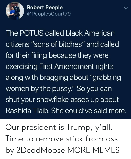 "potus: Robert People  @PeoplesCourt79  The POTUS called black Americarn  citizens ""sons of bitches"" and called  for their firing because they were  exercising First Amendment rights  along with bragging about ""grabbing  women by the pussy."" So you can  shut your snowflake asses up about  Rashida Tlaib. She could've said more. Our president is Trump, y'all. Time to remove stick from ass. by 2DeadMoose MORE MEMES"