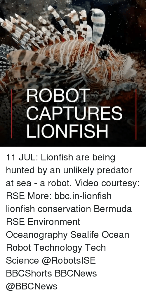 oceaneering: ROBOT  CAPTURES  LIONFISH 11 JUL: Lionfish are being hunted by an unlikely predator at sea - a robot. Video courtesy: RSE More: bbc.in-lionfish lionfish conservation Bermuda RSE Environment Oceanography Sealife Ocean Robot Technology Tech Science @RobotsISE BBCShorts BBCNews @BBCNews ​​​