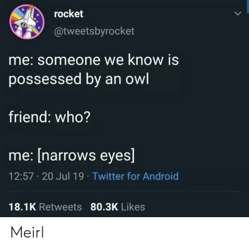 Android, Android 18, and Twitter: rocket  @tweetsbyrocket  me:someone we know is  possessed by an owl  friend: who?  me: [narrows eyes]  12:57 20 Jul 19 Twitter for Android  18.1K Retweets 80.3K Likes Meirl
