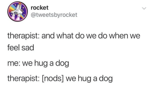 Sad, Dog, and What: rocket  @tweetsbyrocket  therapist: and what do we do when we  feel sad  me: we hug a dog  therapist: [nods] we hug a dog