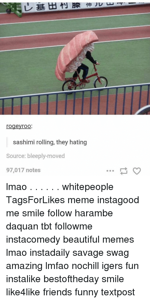 Haramber: rogeyroO  sashimi rolling, they hating  Source: bleeply-moved  97,017 notes lmao . . . . . . whitepeople TagsForLikes meme instagood me smile follow harambe daquan tbt followme instacomedy beautiful memes lmao instadaily savage swag amazing lmfao nochill igers fun instalike bestoftheday smile like4like friends funny textpost