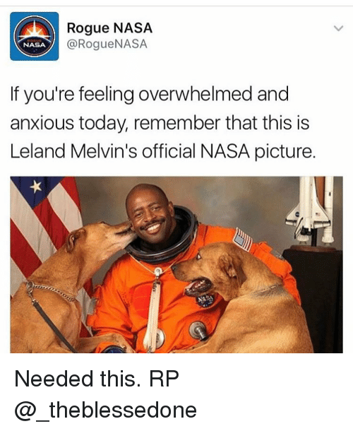 Memes, Nasa, and Rogue: Rogue NASA  @Rogue NASA  NASA  If you're feeling overwhelmed and  anxious today, remember that this is  Leland Melvin's official NASA picture. Needed this. RP @_theblessedone