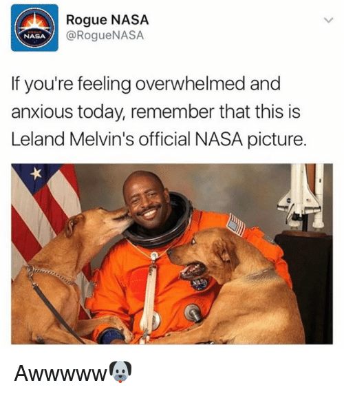 Memes, Nasa, and Rogue: Rogue NASA  @Rogue NASA  NASA  If you're feeling overwhelmed and  anxious today, remember that this is  Leland Melvin's official NASA picture. Awwwww🐶