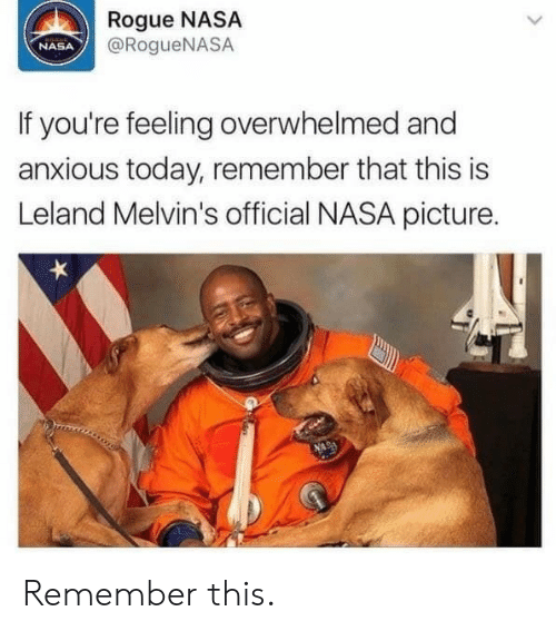 Nasa, Rogue, and Today: Rogue NASA  @RogueNASA  NASA  If you're feeling overwhelmed and  anxious today, remember that this is  Leland Melvin's official NASA picture. Remember this.