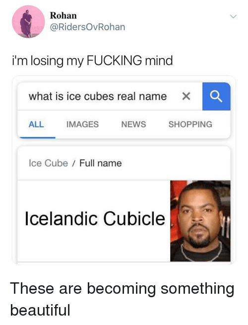 Ice Cubes: Rohan  @RidersOvRohan  i'm losing my FUCKING mind  what is ice cubes real name  x  ALL IMAGES NEWS SHOPPING  Ice Cube Full name  Icelandic Cubicle These are becoming something beautiful