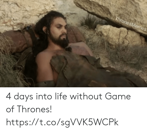 Game of Thrones, Life, and Memes: ronesMemes 4 days into life without Game of Thrones! https://t.co/sgVVK5WCPk